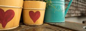 Mit einem roten Herz verzierte Kräutertöpfe, die unsere Liebe zu frischen Lebensmitteln zum Ausdruck bringen